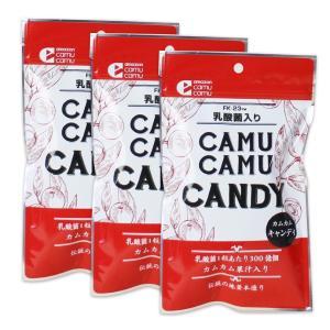 乳酸菌入りカムカムキャンディ×3袋セット【送料全国一律150円】|honpo3boshi