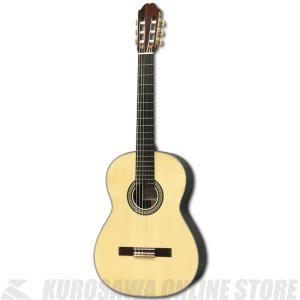 小平ギター AST-150/S 《クラシックギター》【送料無料】 (ご予約受付中)【ONLINE STORE】|honten