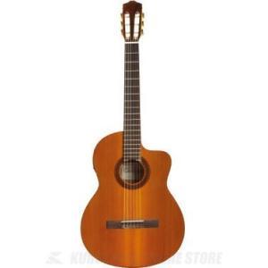 CORDOBA GUITARS Iberia C5-CET(クラシックギター)(送料無料)(納期未定・ご予約受付中) honten