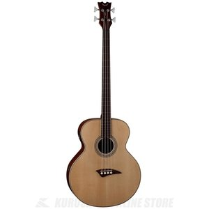DEAN EAB Fretless / Acoustic/Electric Bass Fretless - GN [EAB FL](アコースティックベース)(送料無料)(お取り寄せ)|honten|01