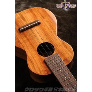 KAMAKA カマカ HF-2 / コンサート(ハードケース付き・送料無料)(ご予約受付中)|honten