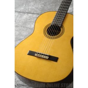 YAMAHA GC Series GC22S (クラシックギター)(送料無料) honten