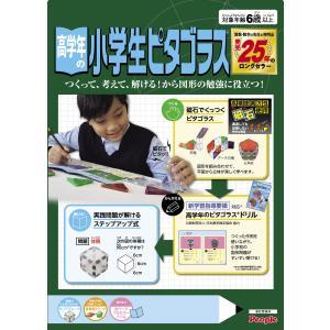 高学年の小学生ピタゴラス 知育玩具   (S:0040)|HonyaClub.com 雑貨館