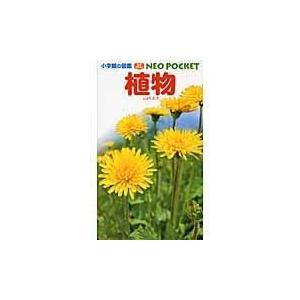 植物/和田浩志