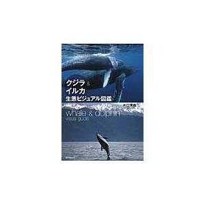 クジラ&イルカ生態ビジュアル図鑑/水口博也 honyaclubbook