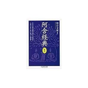 阿含経典 1/増谷文雄