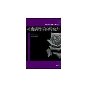 社会病理学的想像力/矢島正見