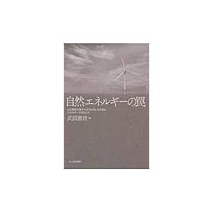 自然エネルギーの罠/武田恵世