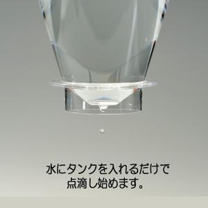 【在庫限定特価品】iwaki イワキ ウォータードリップ コーヒーサーバー 実用容量440ml KT8644-CL|hoonstore|07