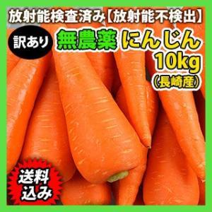 新人参 10kg 無農薬 送料無料 訳ありにんじん ジュース用ニンジン【冷蔵便】