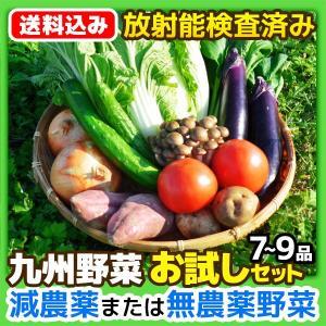 [送料込み]九州 野菜 お試しセット 7〜9品  放射能検査済み 野菜セット