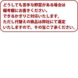 [送料込み]九州 野菜セット12品(オマケ野菜 高級卵含む)  放射能検査済み|hopperu|02