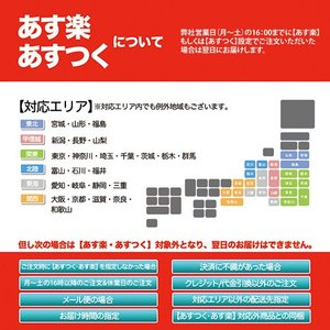 レビューで送料¥390 80/100-10 ダ...の詳細画像3