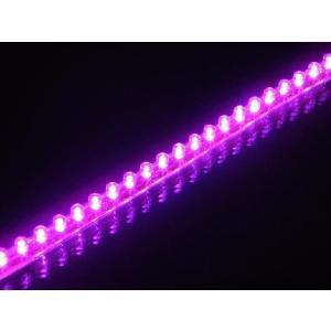 LEDシリコンチューブ24個24cmピンク|horidashi