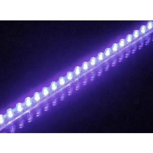 セール特価 LEDチューブ 48個 48cm パープル 紫(PCX125 シグナスX NMAX アクシストリート アドレスV125 マジェスティ マグザム スカイウェイブ フォルツァ)|horidashi