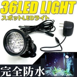 防水 LED球 スポットライトα 完全防水36灯 庭・玄関のライトアップ ホワイト 白色灯 水槽やガーデン用に 〓防水 36灯 LEDスポットライト 白 horidashiichiba
