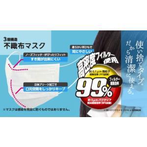 【お得50枚入り】高密度フィルター使用 3層構造 不織布マスク 50P レギュラーサイズ 花粉 ウイルス99%以上カット 立体プリーツ加工 安 不織布マスク horidashiichiba 02