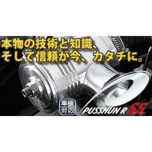 テイクオフ ワゴンRスティングレー MC22S プッシュンR SS TAKE OFF|horidashimono
