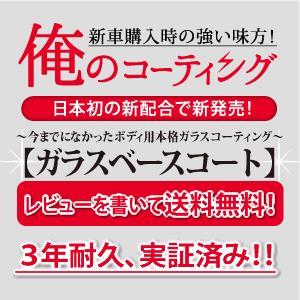 ガラスコーティング 俺のコーティング ガラスベースコート 自動車 ボディ用 全色対応 送料無料 horidashimono 03