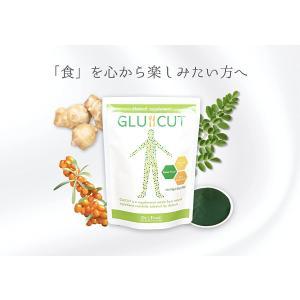 【ドクターチーム開発】Dr.'s Food グルカット GLUCUT 有機モリンガサプリ 健康サポート 4種のスーパーフード配合 300粒 30日分|horie-ph