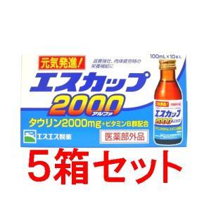 エスカップ2000アルファ 100ml×10本×5箱(1ケース50本)|horie-ph
