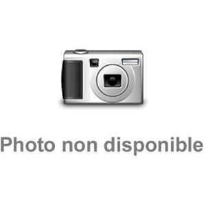 魂ネイション2011 聖衣神話 ドラゴン紫龍 最終青銅聖衣OCE 559817