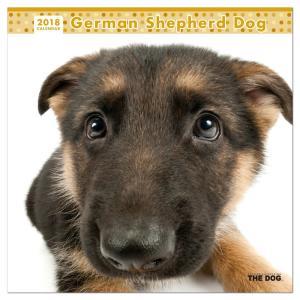 カレンダー 2018 壁掛け THE DOG/犬...の商品画像