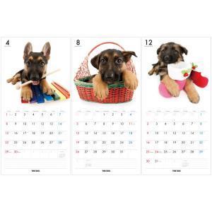 カレンダー 2018 壁掛け THE DOG/...の詳細画像2