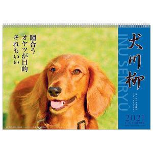 カレンダー 2018 壁掛け ダックス川柳 00...の商品画像
