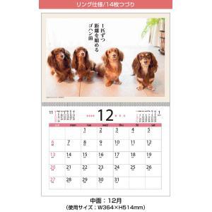 カレンダー 2018 壁掛け ダックス川柳 0...の詳細画像1
