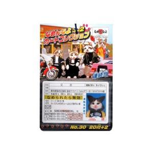 カード 【30円×20付】なめんなよ カードコレクション2(1個入) horishoten