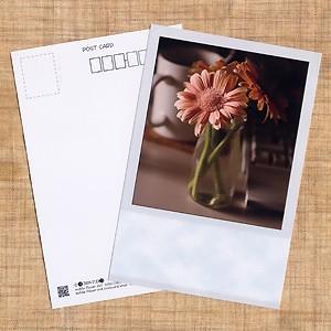 花のポストカード ガーベラ(ピンク、インスタントカメラ風)|horiya-studio