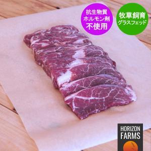 モーガン牧場ビーフ 牛肉 熟成 スカートステーキ(ハラミ)アメリカンビーフ ホルモン剤や抗生物質不使用 焼き肉 450g|horizonfarms