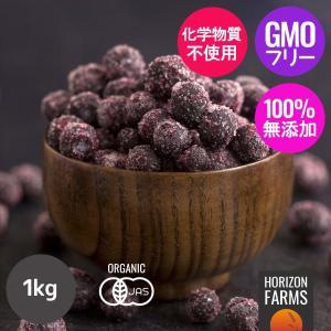 JAS 有機オーガニックブルーベリー1kg 冷凍 野生種(ワイルド)カナダ産 ポリチャック包装 砂糖不使用|horizonfarms
