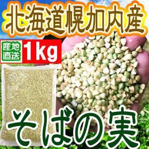 ◆蕎麦の実◆発送日6月15日〜25日出荷可能分◆ H30年度産になりました!  レターパック、レター...