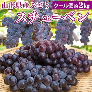 山形県産 ぶどう スチューベン 秀品 2kg 山形の葡萄 ブ...