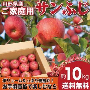 りんご 訳あり 10キロ サンふじ 山形県産 ご家庭用 産地直送 林檎 リンゴ 10kg【12月上旬から中旬発送】