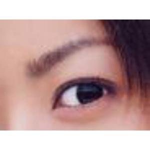 眉プレート MAYU美 女性用 A-23 井上 真央 さん タイプ (固定具別売り)|hosinoya|05