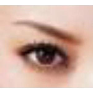 眉毛テンプレート MAYU美 女性用 A-40 蛯原 友里 さん タイプ (固定具別売り)|hosinoya|05