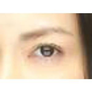 眉メイク用道具 MAYU美 女性用 H-11 長谷川 京子 さん タイプ (固定具別売り)|hosinoya|05