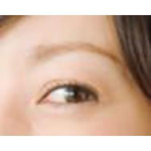 眉プレート MAYU美 女性用 K-11 菅野 美穂 さん タイプ (固定具別売り)|hosinoya|05