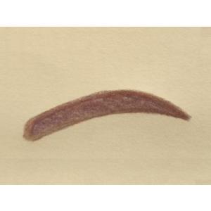眉毛テンプレートMAYU美 女性用 M-17 松 たか子さんタイプ (固定具別売り)|hosinoya|02