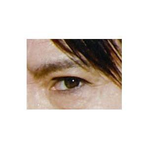 眉毛プレート MAYU美 男性用 MH-22 氷室 京介 さん タイプ (固定具別売り)|hosinoya|05