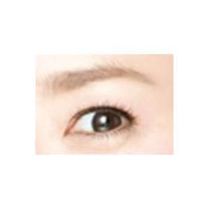眉毛テンプレートMAYU美 女性用 N-13 永作 博美 さんタイプ (固定具別売り) hosinoya 05