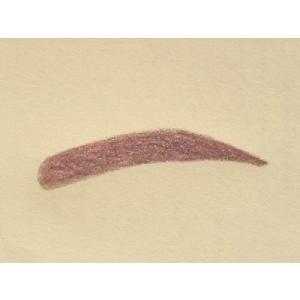 眉毛テンプレートMAYU美 女性用 N-14 中村 アン さんタイプ (固定具別売り)|hosinoya|02