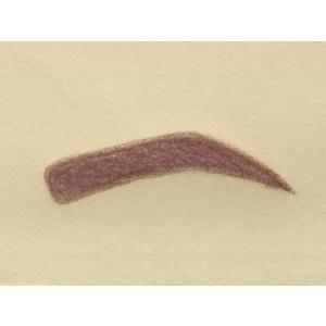 眉毛テンプレートMAYU美 女性用 N-15 夏目 三久 さんタイプ (固定具別売り)|hosinoya|02