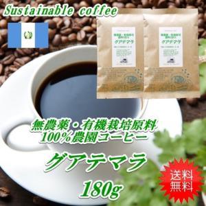 コーヒー 無農薬栽培 コーヒー グアテマラ 180g メール便送料無料