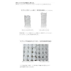 送料無料 ベッド マットレス付き 脚付きマットレスベッド ダブル ピロートップ6.5インチポケットコイル 「国産 日本製」 マットレスベッド|hotakebed|04