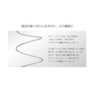 送料無料 ベッド マットレス付き 脚付きマットレスベッド ダブル ピロートップ6.5インチポケットコイル 「国産 日本製」 マットレスベッド|hotakebed|05