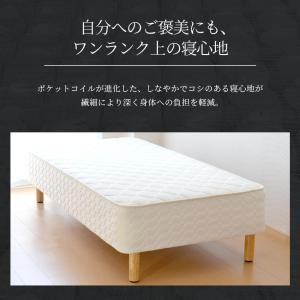 送料無料 ベッド マットレス付き 脚付きマットレスベッド シングル 6.5インチポケットコイル 「日本製」 マットレスベッド hotakebed 05